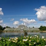 Awesome in the autumn: why you should visit Kew Gardens