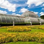 A Day Out with The Kids – Kew Gardens, London