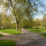 5 Tourist Attractions to Explore Near Hyde Park